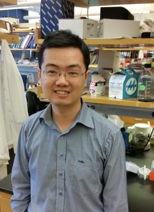 Xiang Ma : Postdoctoral Fellow