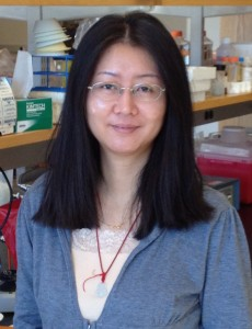 Hongyun Li