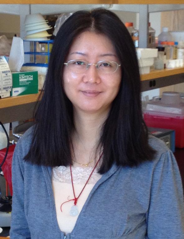 Hongyun Li : Lab manager