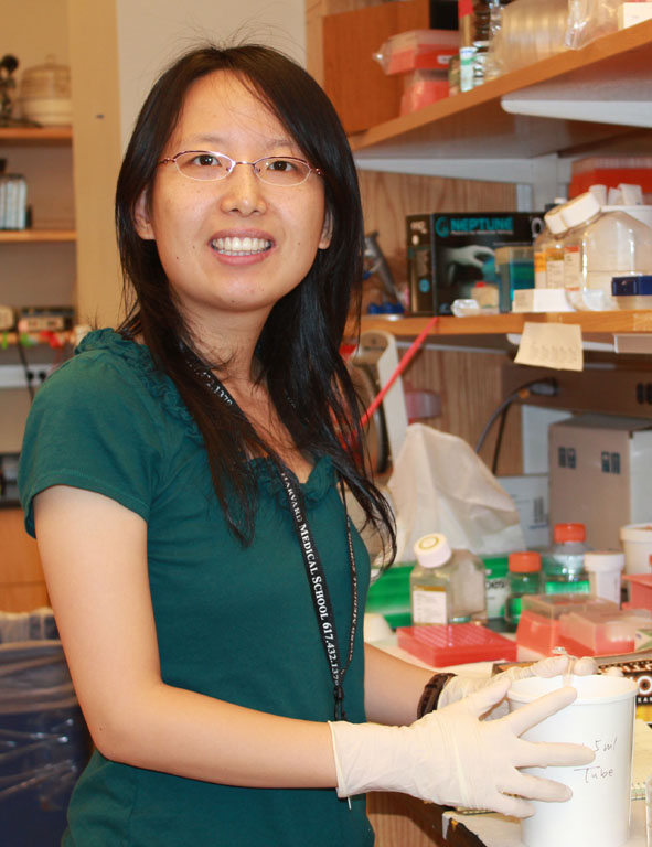 Sui Wang : Postdoctoral Fellow