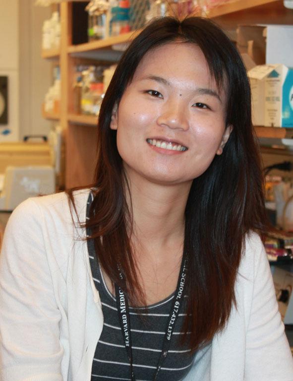Wenjun Xiong : Postdoctoral Fellow